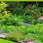 Oui au jardin plaisir, non au jardin corvée