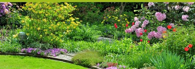 e paysages les atouts d 39 un paysagiste en ligne pour votre jardin. Black Bedroom Furniture Sets. Home Design Ideas