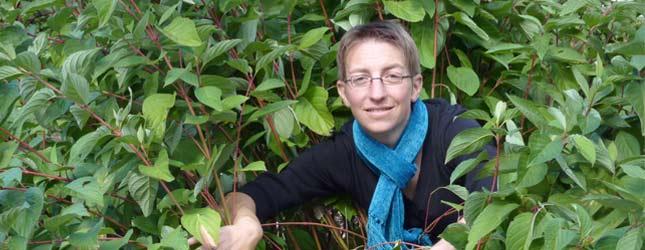 E-paysages : paysagiste conseil en ligne