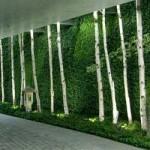 Mur végétal : explorez de nouveaux horizons